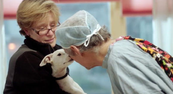Martin Goldstein with a little white dog patient and her owner in The Dog Doc