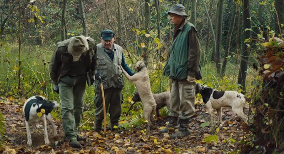 Truffle hunters and their dogs