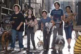 Troy Gentile as Mark, Emma Roberts as Andi, Jake T. Austin as Bruce, Johnny Simmons as Dave and Kyla Pratt as Heather