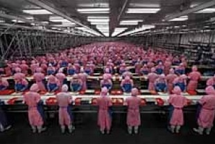 Edward Burtynsky's Photograph of Deda Chicken Processing Plant, Dehui City, Jilin ProvinceTitle