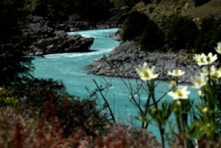 A river in Patagonia